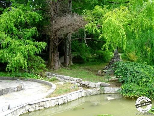 ДЕНДРАРИЙ. Каменный сад