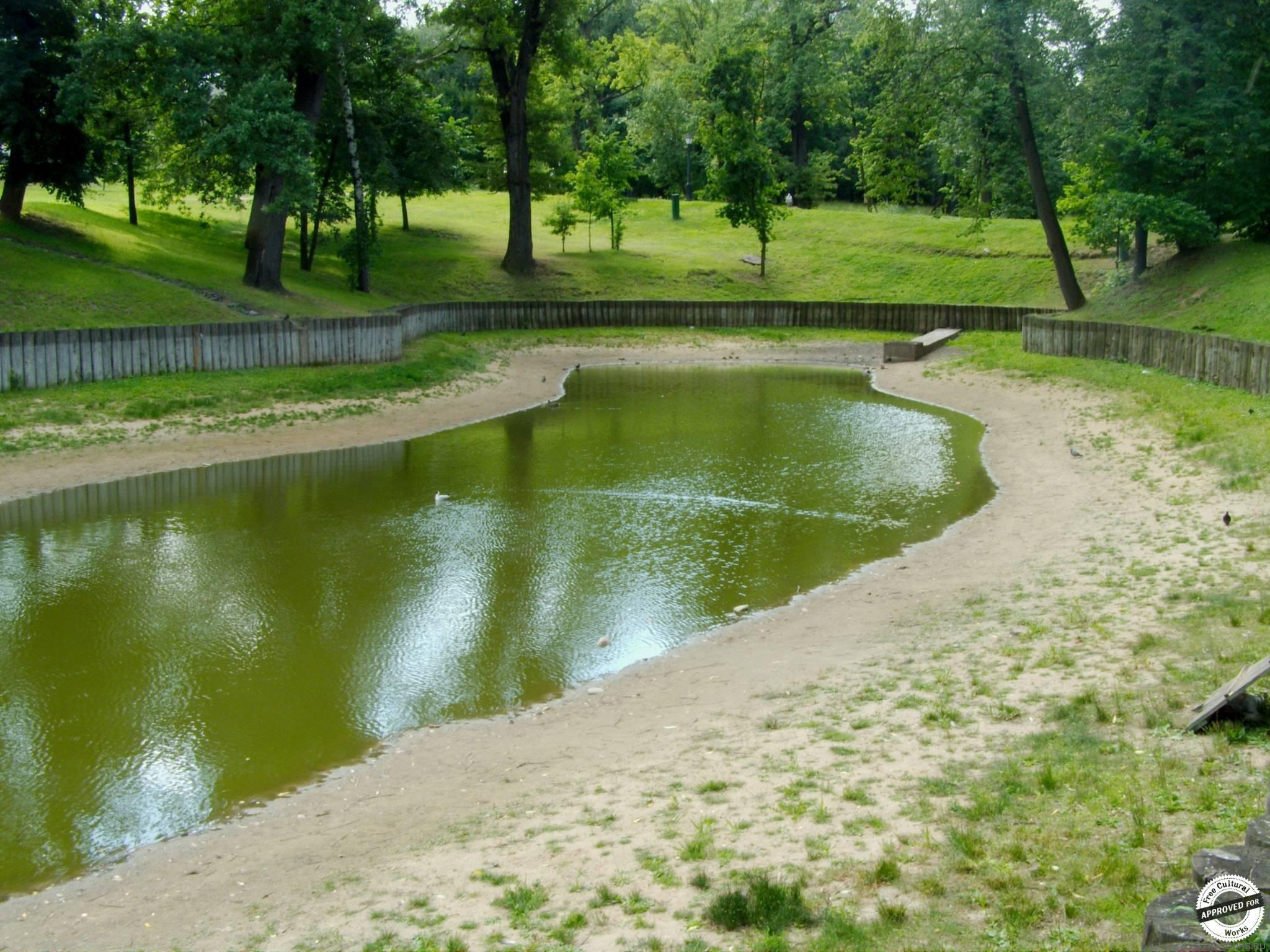 Высыхающее озеро, Царицыно, Парки москвы.