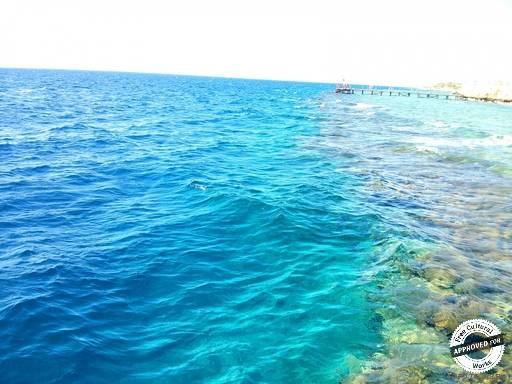 Коралловый риф. Граница кораллового рифа и большой воды