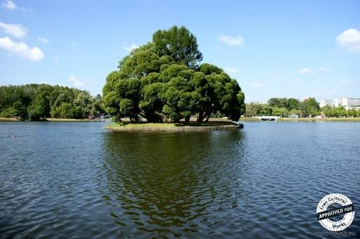 Царицынские пруды. Остров на озере