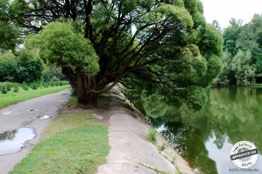 Измайловский парк. Озеро в парке Измайловский