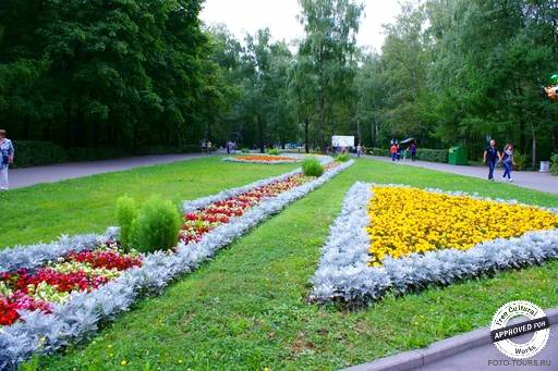 Кузьминский парк.
