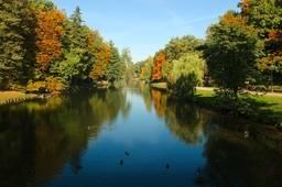 Осень на пруду