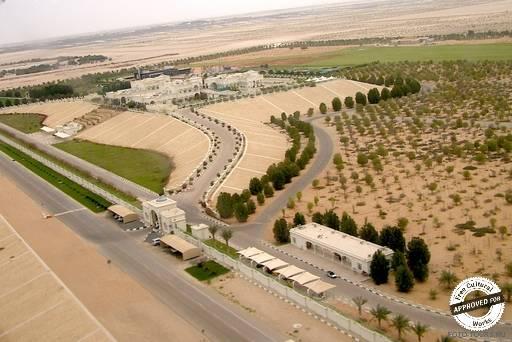 Аэропорт Абу-Даби. Территория аэропорта