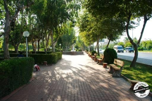 Тенистая аллея  в парке «konakli belediyesi»