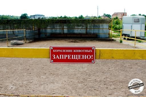 Место для выгула пони