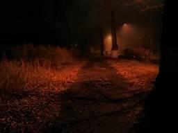 Ночная дорога к вокзалу