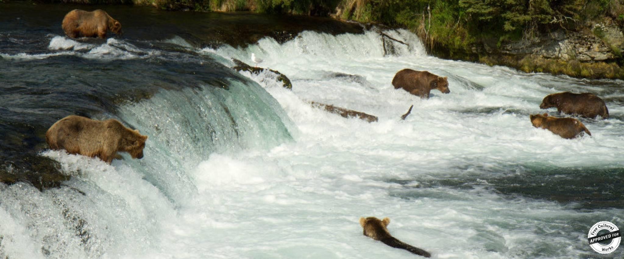 Водопад Брукс